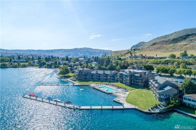 Douglas County, Chelan County Condo/Townhouse For Sale: 103 N Park St #341