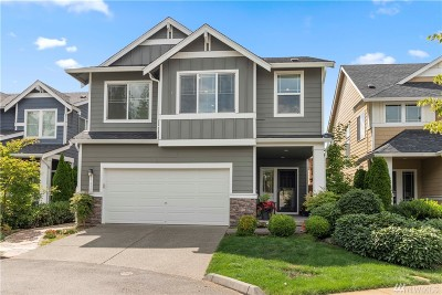 Bothell Single Family Home For Sale: 17822 39th Ave SE