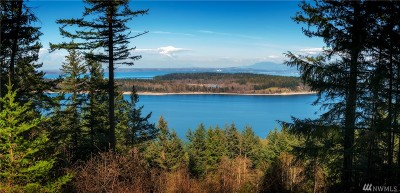 Lummi Island Residential Lots & Land For Sale: 2965 Hales Passage Dr