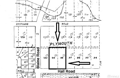 Blaine Residential Lots & Land For Sale: 4558 Hall Rd