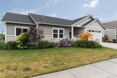 Skagit County Single Family Home For Sale: 3047 Pine Creek Dr