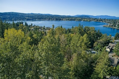Residential Lots & Land For Sale: 2929 Toad Lake Road