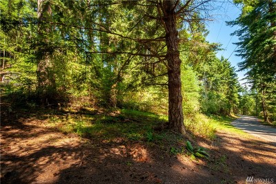 Lummi Island Residential Lots & Land For Sale: 1089 Island Dr