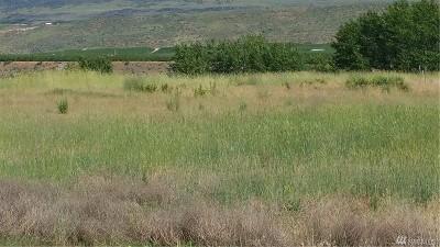 Chelan, Chelan Falls, Entiat, Manson, Brewster, Bridgeport, Orondo Residential Lots & Land For Sale: 135 Dion Dr
