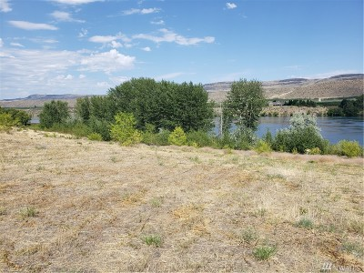Chelan, Chelan Falls, Entiat, Manson, Brewster, Bridgeport, Orondo Residential Lots & Land For Sale: 119 Dion Dr
