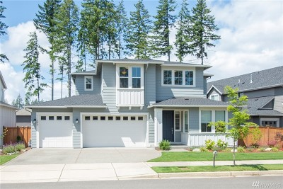 Gig Harbor Single Family Home For Sale: 11544 Buckhorn Place