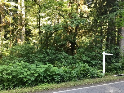 Snohomish Residential Lots & Land For Sale: 212 S Lake Roesiger Rd