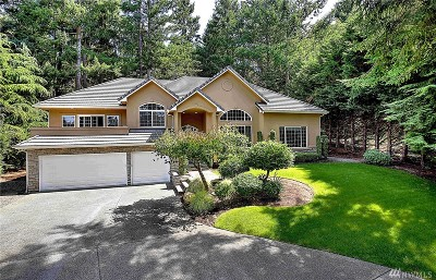 Gig Harbor Single Family Home For Sale: 911 23rd Ave NW