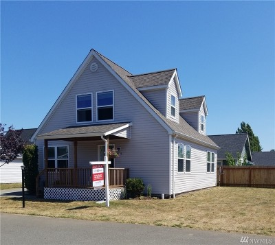 Ferndale Single Family Home For Sale: 6535 Quest St