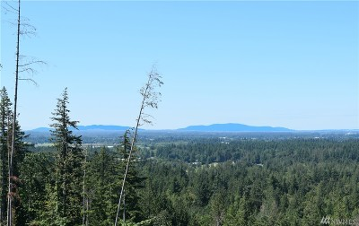 Nooksack Residential Lots & Land For Sale: 8400 N Pass Rd #S