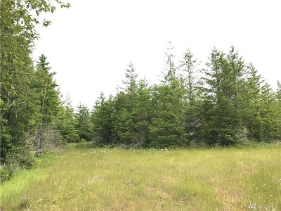 Yelm Residential Lots & Land For Sale: 1 (Central) 173rd Ave SE