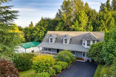 Snohomish Single Family Home For Sale: 9608 Wall St