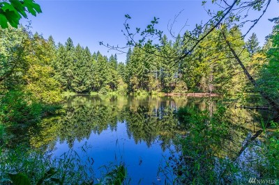 Yelm Residential Lots & Land For Sale: 22206 Bluewater Dr SE