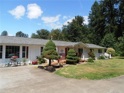 Lewis County Single Family Home For Sale: 313 Jorgensen Rd