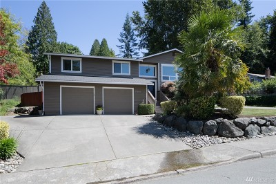 Woodinville Single Family Home For Sale: 17804 146th Ave NE