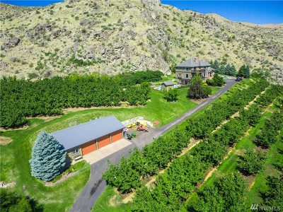 Entiat Single Family Home For Sale: 13970 Roundy Dr