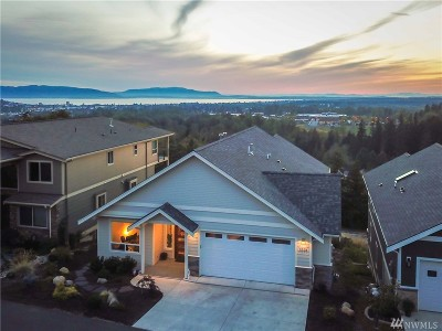Bellingham Single Family Home For Sale: 3225 Stonecrop Lane