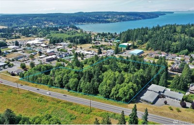 Freeland Residential Lots & Land For Sale: 17 Main Street