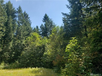 Yelm Residential Lots & Land For Sale: 17226 Bald Hill Rd SE