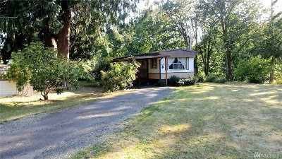 Lewis County Single Family Home For Sale: 431 Pleasant Ave