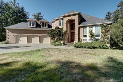 Pierce County Single Family Home For Sale: 241 Island Blvd