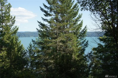 Brinnon Single Family Home For Sale: 313784 Highway 101