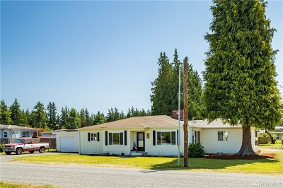 Sedro Woolley Single Family Home For Sale: 1029 Polte Rd
