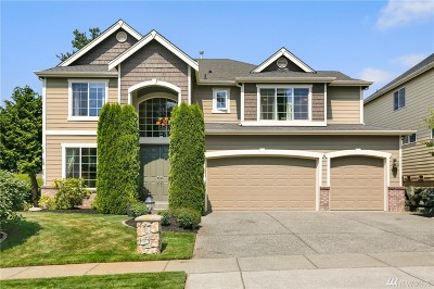 Bothell Single Family Home For Sale: 4101 220th St SE