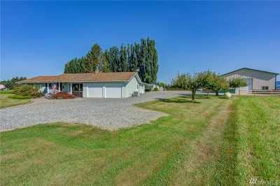 Everson , Nooksack, Sumas Single Family Home For Sale: 4420 Reese Hill Rd