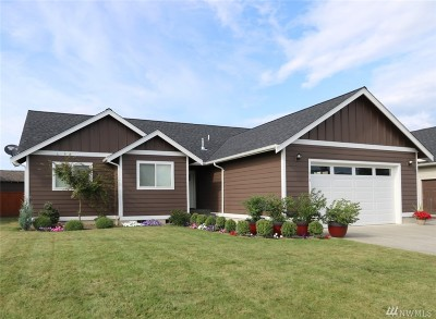 Everson, Nooksack Single Family Home For Sale: 410 Amareen Ct