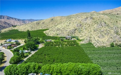 Chelan, Chelan Falls, Entiat, Manson, Brewster, Bridgeport, Orondo Residential Lots & Land For Sale: Roundy Dr
