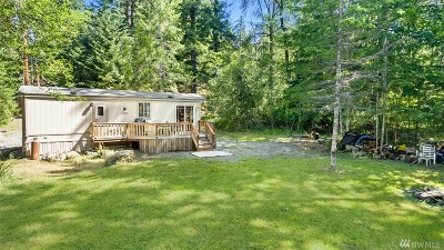 Lewis County Single Family Home For Sale: 197 Paradise Dr