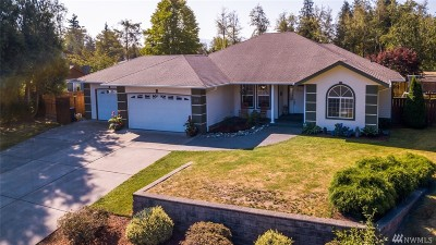 Whatcom County Single Family Home Pending: 219 Oakdale Dr