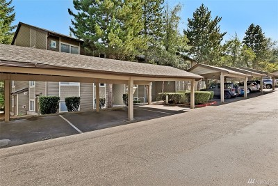 Issaquah Condo/Townhouse For Sale: 202 Mt Park Blvd SW #B202