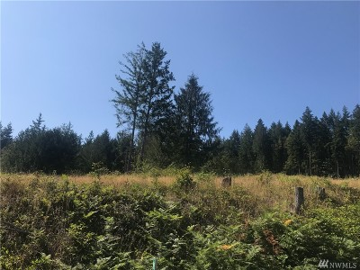 Residential Lots & Land For Sale: 106 Brier Rd