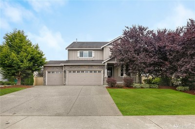 Stanwood Single Family Home For Sale: 28517 70th Dr NW