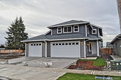 Lewis County Multi Family Home For Sale: 289 S Diamond St