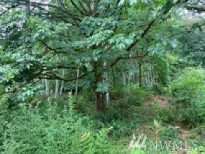 Olympia Residential Lots & Land For Sale: Bayview Dr NE