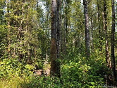 Graham Residential Lots & Land For Sale: 13401 278th St E