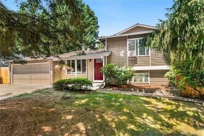 Kirkland Single Family Home For Sale: 9724 NE 124th St