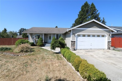 Ferndale Single Family Home For Sale: 6489 Portal Manor Dr