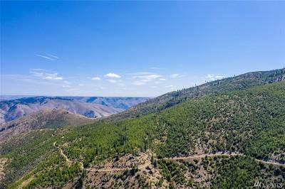 Chelan, Chelan Falls, Entiat, Manson, Brewster, Bridgeport, Orondo Residential Lots & Land For Sale: Mills Canyon Rd