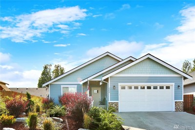 Ferndale Single Family Home For Sale: 6003 Pacific Heights Dr