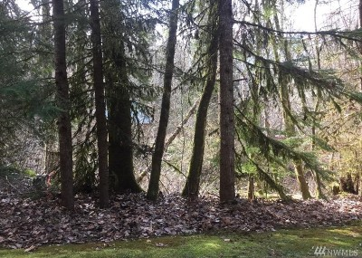 Whatcom County Residential Lots & Land For Sale: 17032 Iceberg Rd