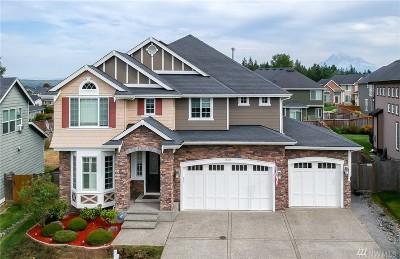 Thurston County, King County, Pierce County, Mason County Single Family Home For Sale: 17105 135th Ave E