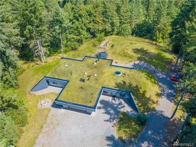 Yelm Single Family Home For Sale: 16534 Bald Hill Rd SE