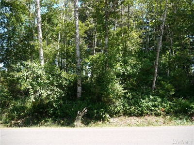 Grays Harbor County Residential Lots & Land For Sale: 672 Chenois Ave NE
