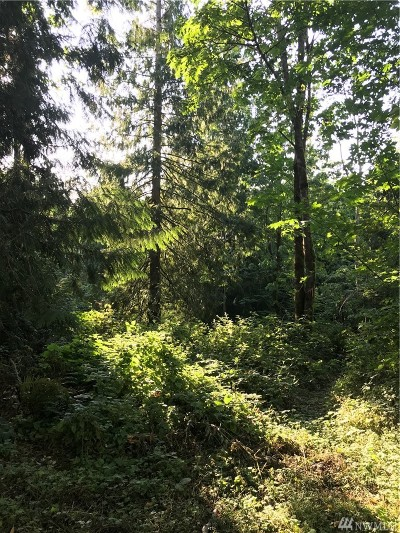 Bellingham WA Residential Lots & Land For Sale: $299,900