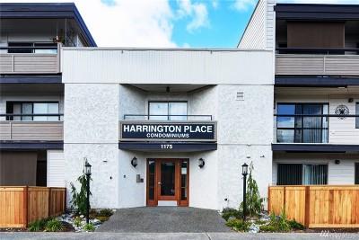 Renton Condo/Townhouse For Sale: 1175 Harrington Place NE #311