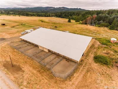 Lewis County Farm For Sale: 266 Doty Dryad Rd